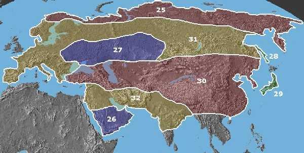 Poddruhy vlka v Eurasii